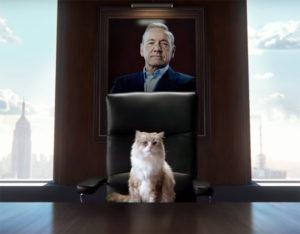 Kevin Spacey vira gato em comédia