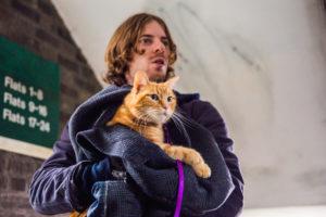 Gato chamado Bob ganha filme