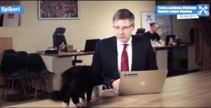 gato interrompe entrevista ao vivo